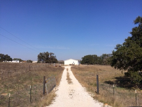 Used Singe Wide Mobile Homes for sale